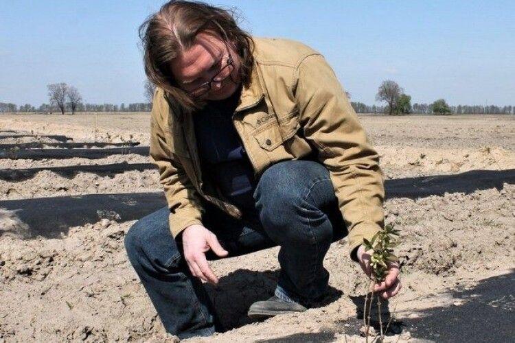 Фермер вирощує незвичну для України жимолость