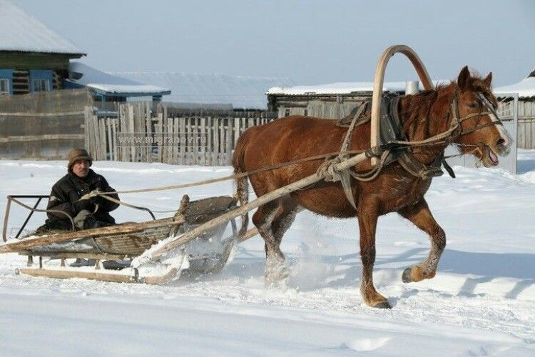 Патрульні закликали волинських водіїв готуватися до снігових переметів: назвали місця, де можна перечекати негоду в дорозі