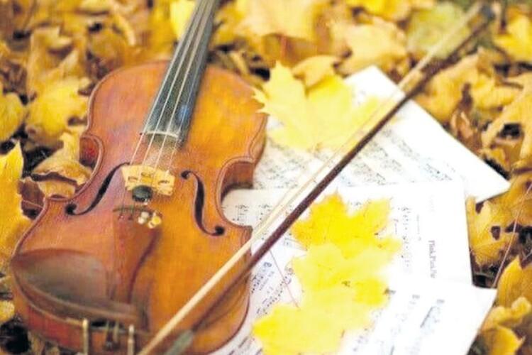 Історія про Маестро, скрипку, осіннього кота і не тільки: «Треба було свою дитину народити, тоді б мали доньку…»