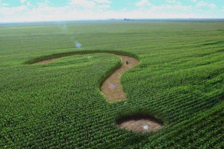 Землю зі ставком вартістю 1,5 млн грн повернуть державі