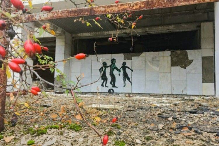 Чорнобиль на Різдво подарував українцям весняну аномалію: повилазили котики