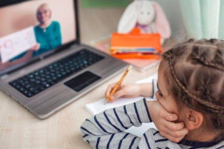 Нововолинські школи йдуть в онлайн