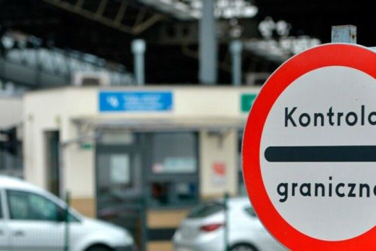 Українець заховав у багажнику тварин, щоб незаконно вивезти у Польщу (Фото)