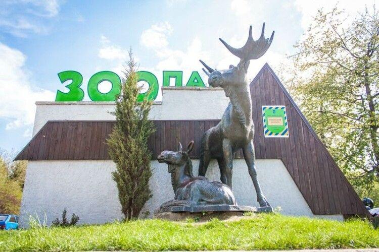 Шукають охочих працювати в Рівненському зоопарку