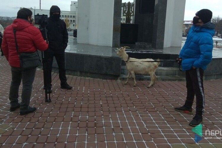Під Волинською ОДА – протестують: мітингувальники привели козу