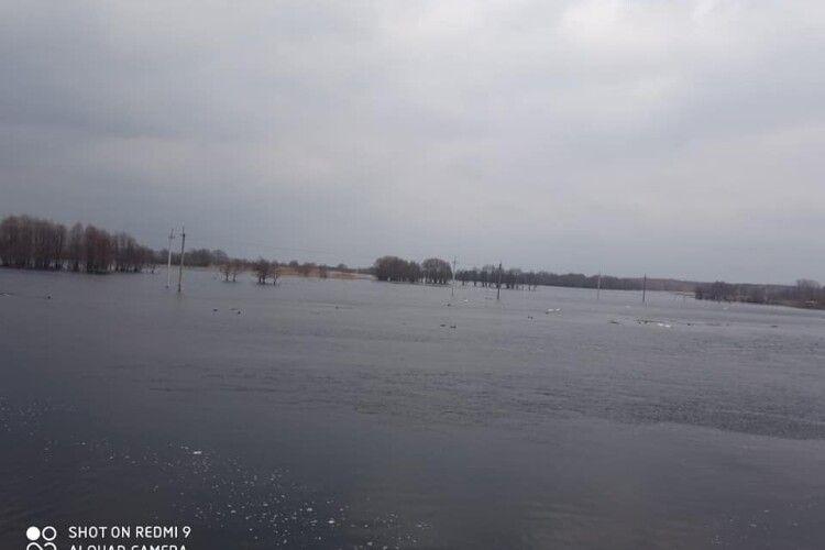 Річка Прип'ять вийшла з берегів (Фото)