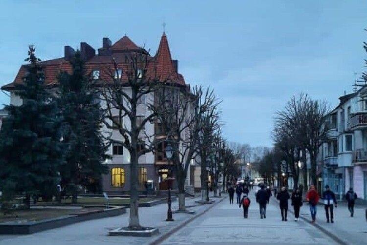 Дерева у центрі Луцька тепер як у австрійському Відні чи німецькому Ліппе (Фото)