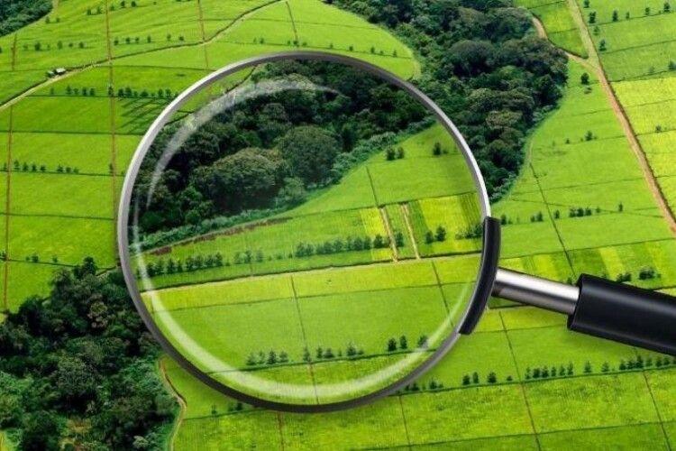 На Волині в ході земельних торгів вартість права оренди на ділянку зросла уп'ятеро