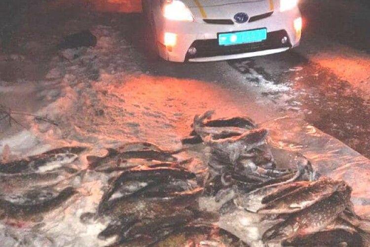 На Рівненщині «спалили» волинян зі 100 кілограмами щуки