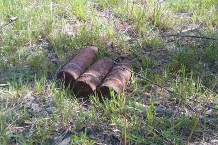 Волинські сапери знищили 11 боєприпасів часів Другої Світової війни