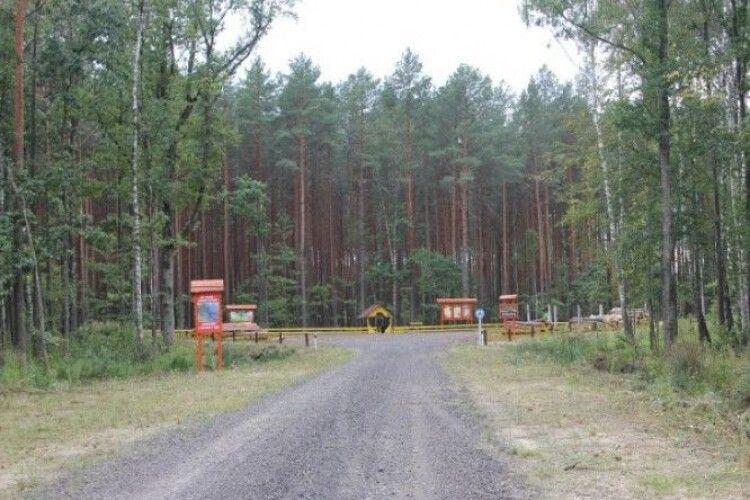 Подарували людям лісову дорогу