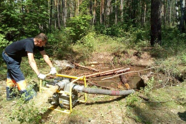 Бійці ДСНС врятували лосеня, яке потрапило в пастку (фото)