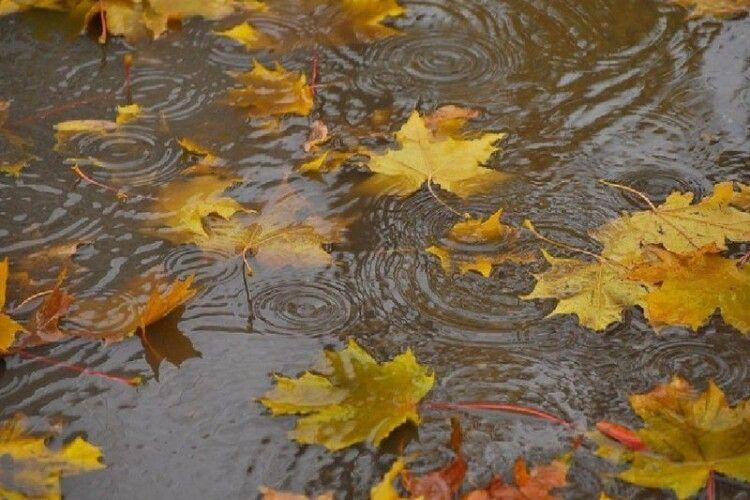 Західну Україну заллють дощі, місцями – зливи