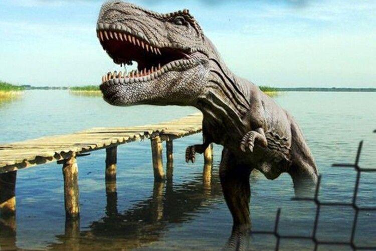 На Світязі виявили динозаврів (Відео)