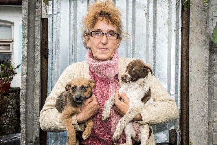 Ніна Кондратюк тримає вдома понад 100 собак і котів