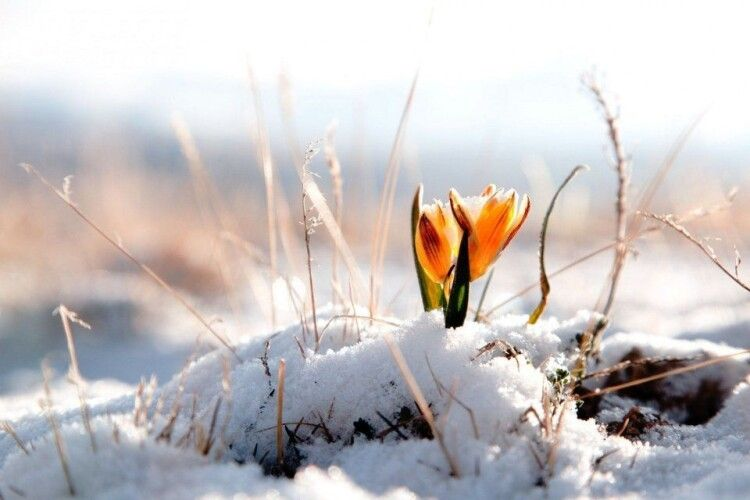 До України йде різке потепління