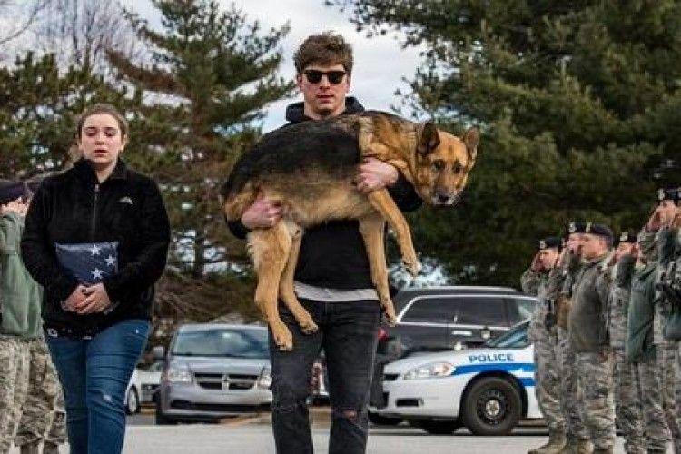 Військові зі сльозами на очах прощалися з собакою-героєм