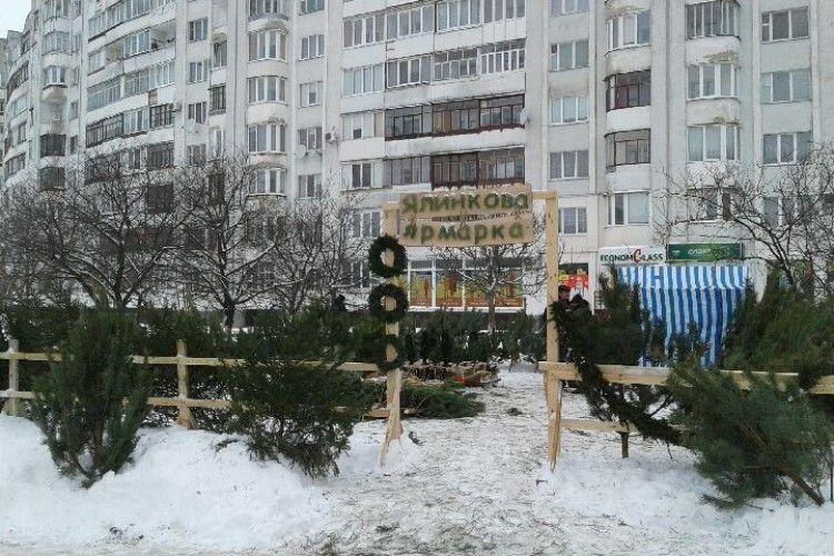 Ялинково-ярмарковий Луцьк: за лісову красуню навзамін просять купюру з Луцьким замком (фото)