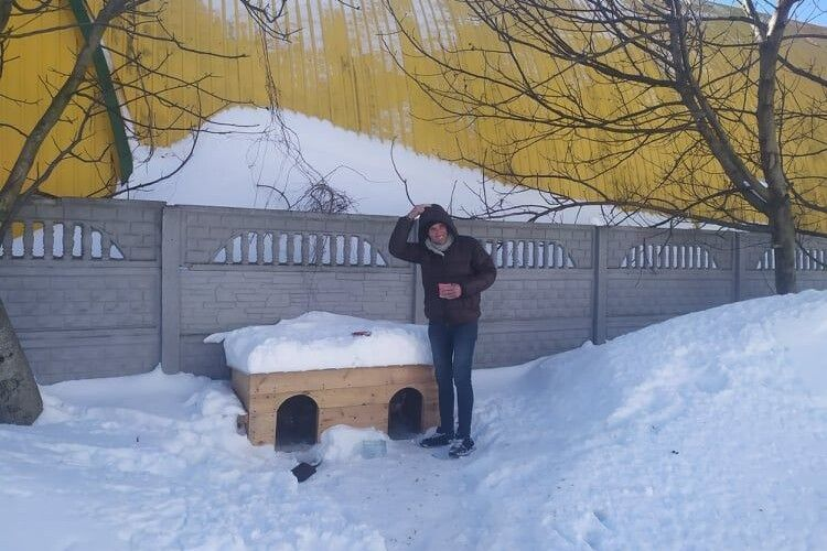 Жителі 55 мікрорайону Луцька встановили у дворі двомісні апартаменти для песиків (Фото)