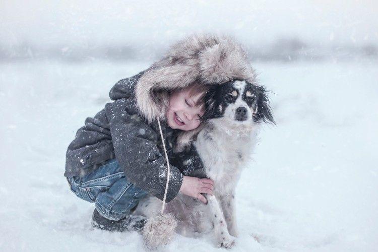 Сьогодні можна допомогти собачкам не лише повідомленнями у соціальних мережах