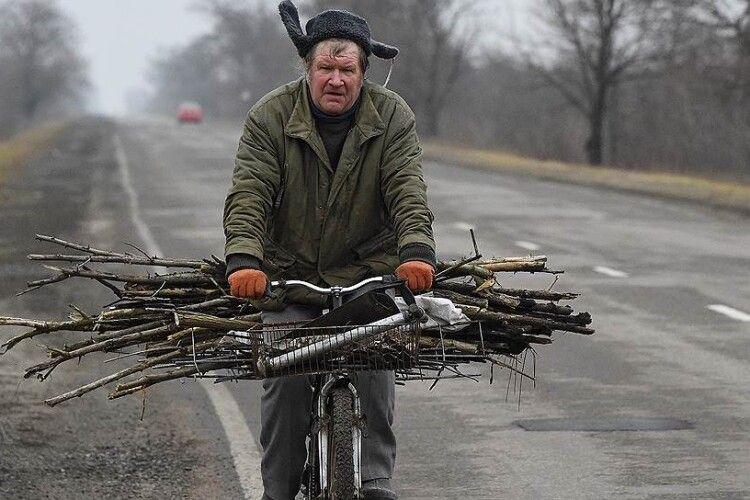 Українці вимагають безперешкодного права збирати дрова в лісі, не озираючись на лісників, поліцію та олігархів