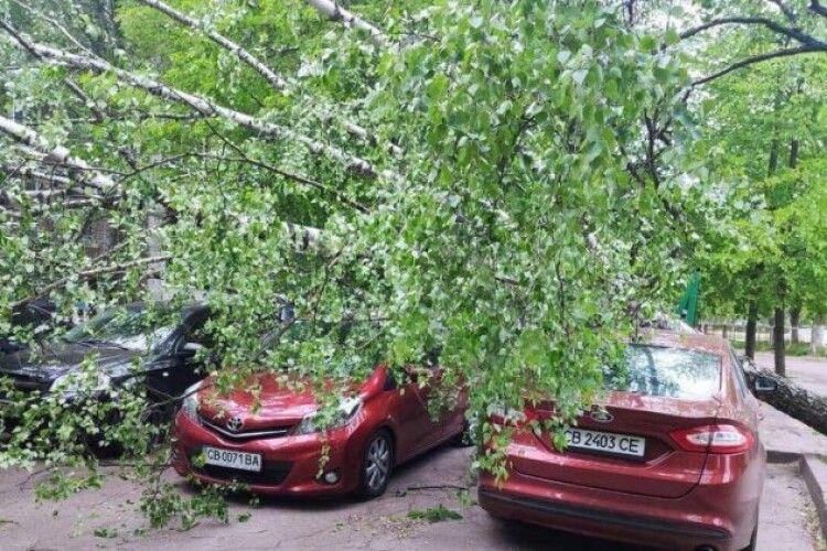 Ураганний вітер валив дерева, блокував дороги і травмував людей (Фото. Відео)
