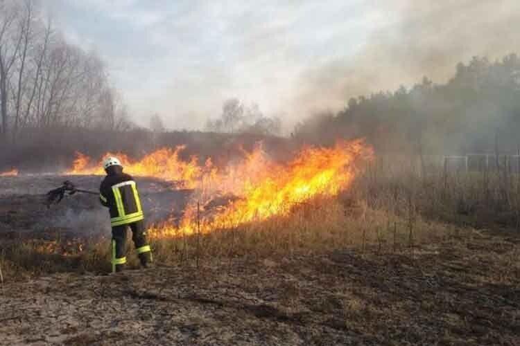 «Вогонь пожирав суху траву і добрався до дерев на відрізку до двох кілометрів»