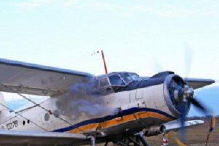 Шлюб у хмарах: в Україні з'явиться повітряний РАЦС