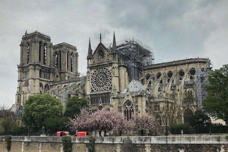 У пошкодженому пожежею Соборі Паризької Богоматері почали демонтаж великого органу