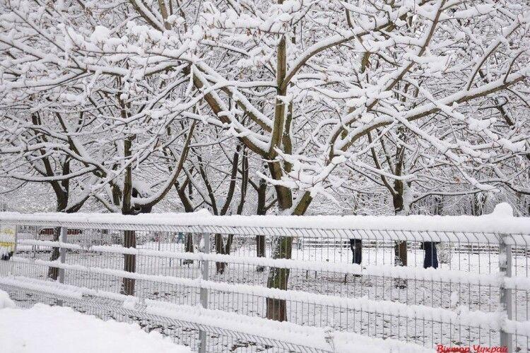 «Упасти обличчям у білий, незайманий сніг». Наша суботня добірка