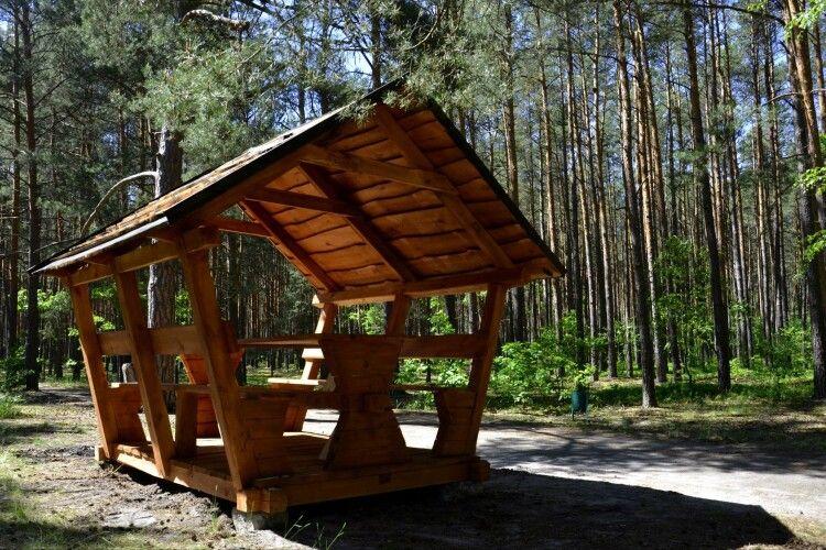 У Шацькому нацпарку оновили екостежку «Лісова пісня»: слухати спів пташок та шум вітру стане комфортніше (фото)