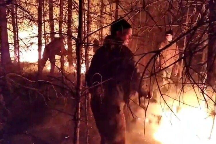 Понад пів сотні волинян серед ночі гасили лісову пожежу – і не впустили червоного півня у село (Відео)