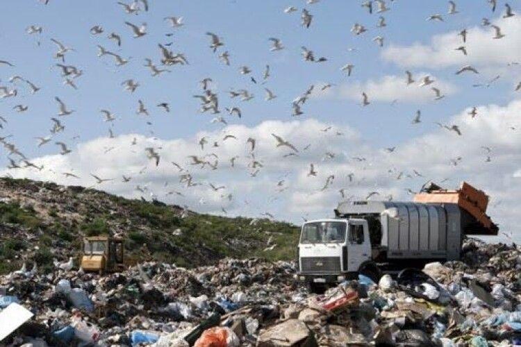 Біля Ковеля хочуть розгорнути великий сміттєвий полігон із заводом