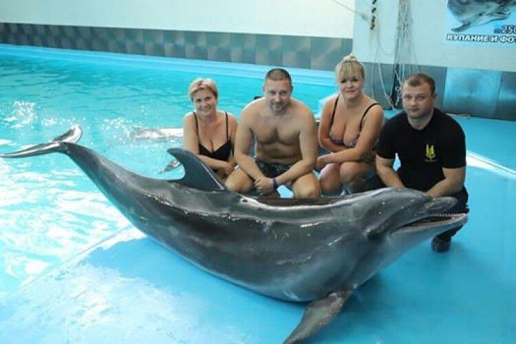 Воїнам АТО/ООС забути війну... допоможуть дельфіни