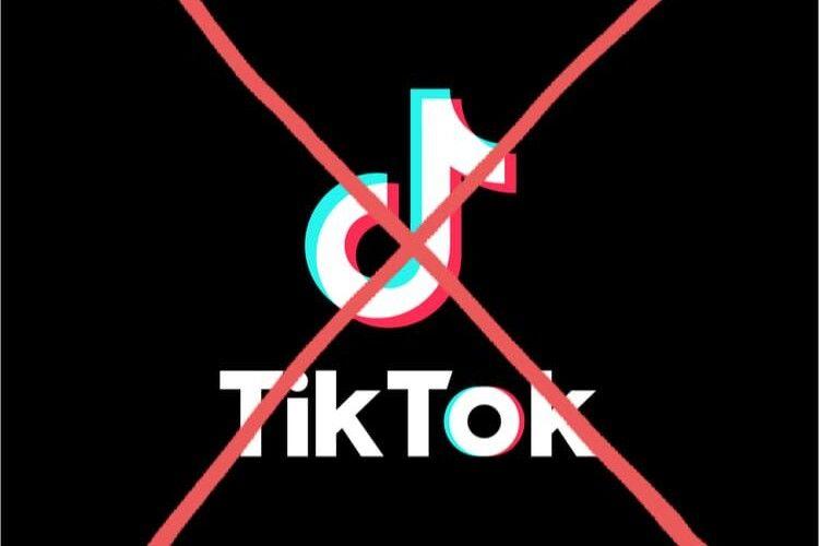 Діти деградують: Зеленського просять заборонити в Україні Тik-Tok