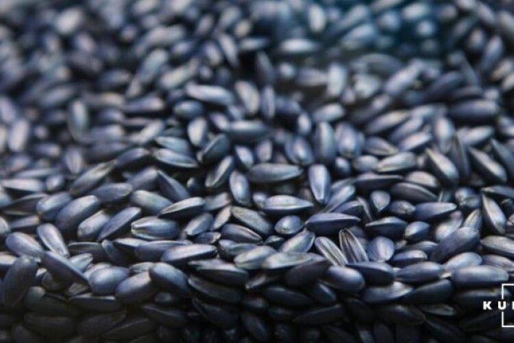 Українцям варто готуватися до здорожчання олії: аграрні ділки спритно вивозять з держави соняшник