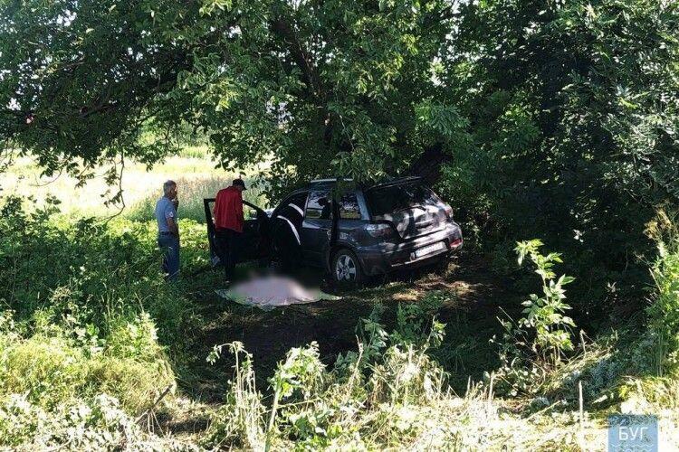 Смертельна ДТП: на виїзді з Нововолинська водій в'їхав у дерево