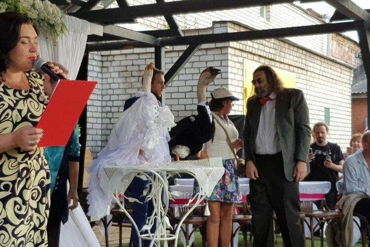 У Білорусі гусак врочисто одружився з гускою (фото)