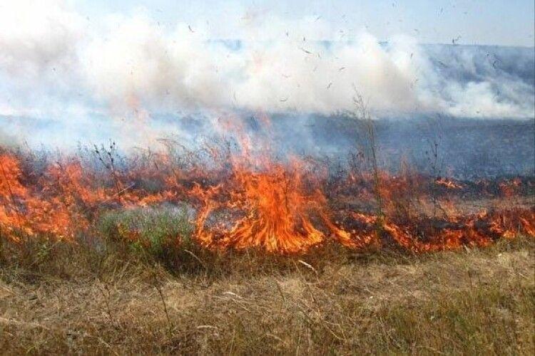 Які штрафи загрожують волинянам цьогоріч за паління сухої трави