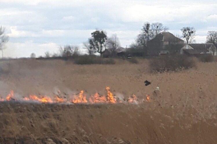 Волинським рятувальникам не вдається загасити пожежу на болоті (Фото)