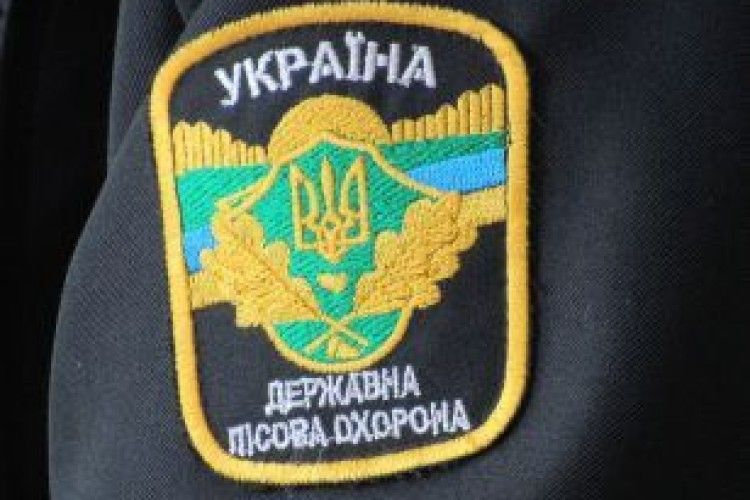 Крадену на Маневиччині деревину виявили у Рівненській області