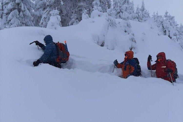У заметених снігом Карпатах шукають 25-річного туриста зі Львова (Фото)