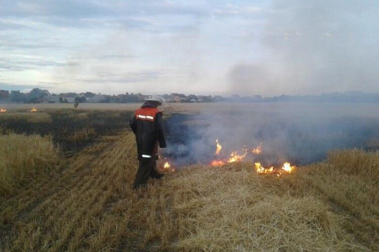 Рятувальники виявили палія, через якого горіло поле під Луцьком