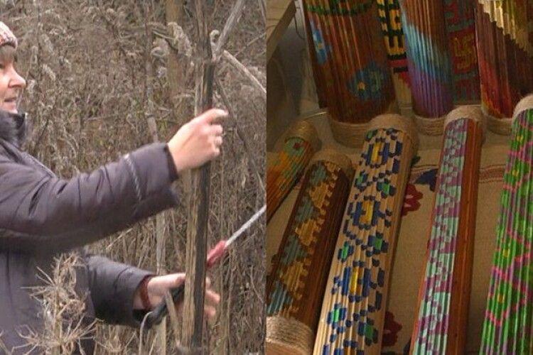 Лучанка перетворює отруйний борщівник у музичні  інструменти