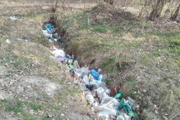 У Цуманській пущі висадили 500 саджанців дуба і прибирали стихійні смітники