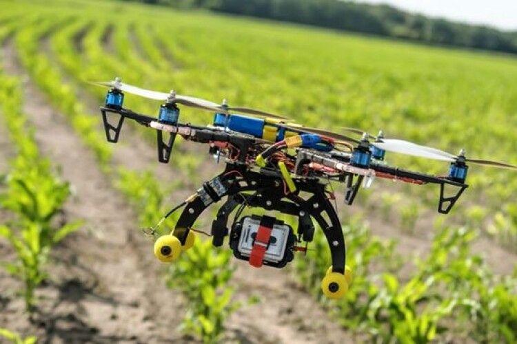 Науковці розробили дрон, що рахує полуницю з повітря