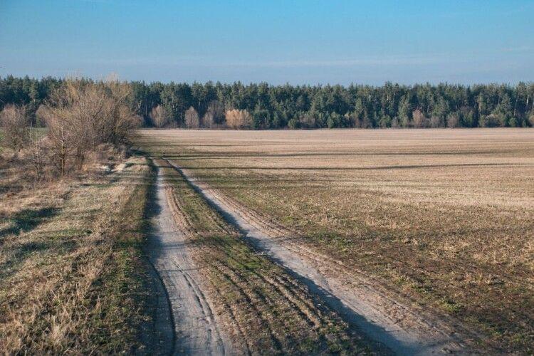 На Рівненщині в лісі знайшли мертвою жінку, яку шукали кілька днів