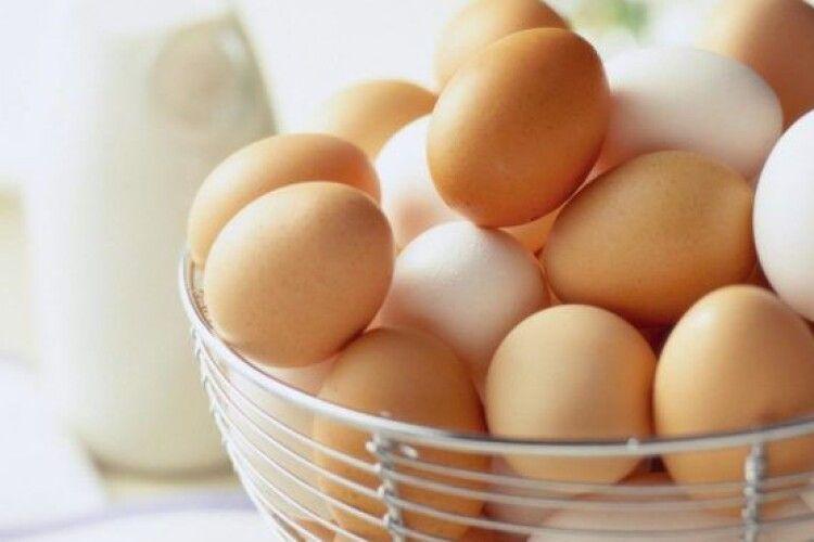 Латвія може призупинити імпорт яєць з України