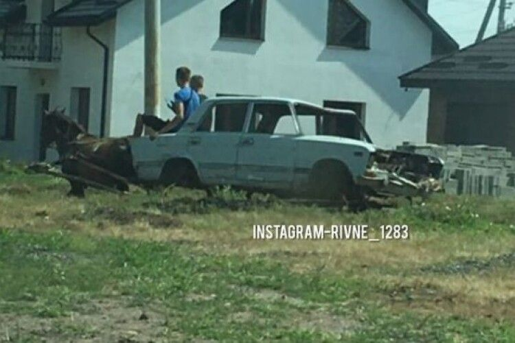 Рівненські хлопці зі старих «Жигулі» зробили воза