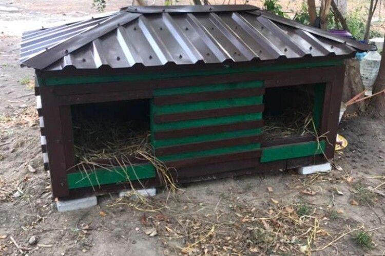 У Луцьку справили новосілля на Собачій вулиці (фото)